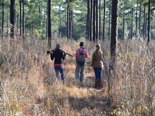 Arrow Head Lake Plantation : Quincy : Gadsden County : Florida