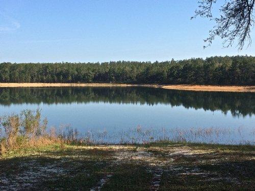 Ten Mile Creek : Altha : Calhoun County : Florida