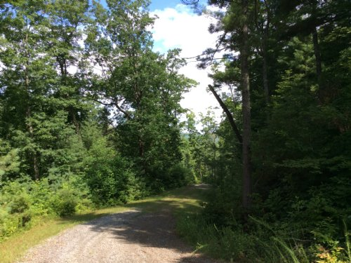 0.9 Acres : Little River Township : Transylvania County : North Carolina