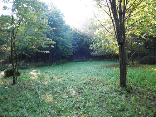 New York Land For Sale 15 Acres : Lapeer : Cortland County : New York
