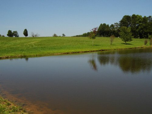 Overlooking The Pond : Keysville : Charlotte County : Virginia