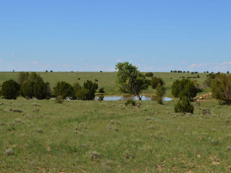 L & L Stone Ranch : Kim : Las Animas County : Colorado