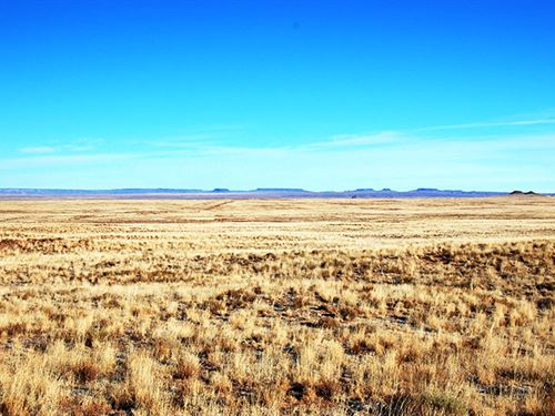 1.25 Acres Near Holbrook : Holbrook : Navajo County : Arizona