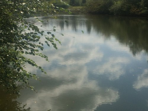 Towaliga River : Forsyth : Monroe County : Georgia