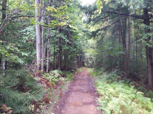 New York Land Near Adirondacks : Forestport : Oneida County : New York