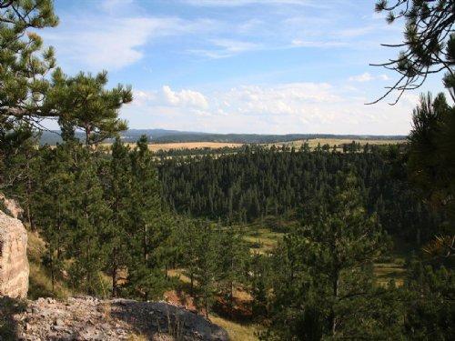 Eagle Ridge Ranch : Sundance : Crook County : Wyoming