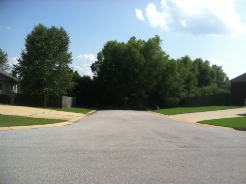 Foreclosed 20 Acres Behind Subd. : Tuscaloosa County : Alabama