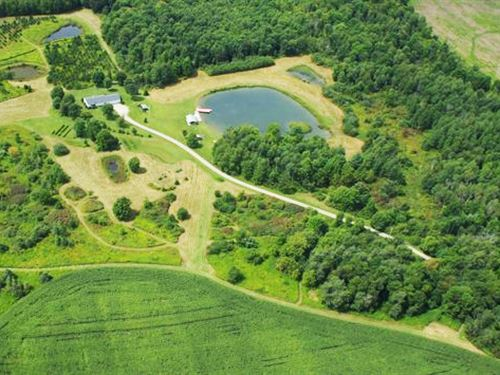 199 Acres House Farmland Dansville : Dansville : Steuben County : New York