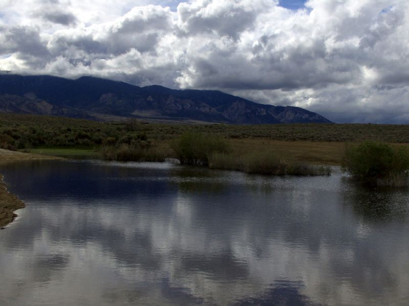 Seasonal Pond Bordering Public Land : Belfry : Carbon County : Montana