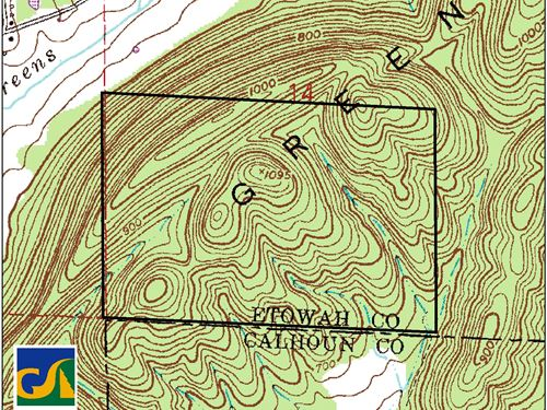 31-001 Green Creek Mtn : Gadsden : Etowah County : Alabama