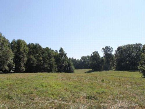 25+/- Acres For Sale : Woodland : Randolph County : Alabama