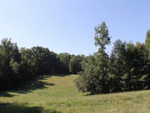 34.5+/- Acres : Woodland : Randolph County : Alabama