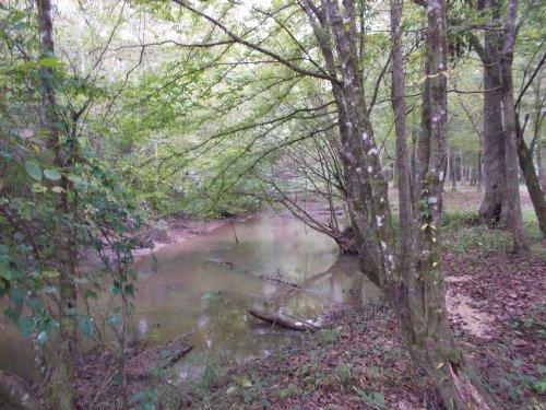 27 Acres On Mortar Creek : Deatsville : Autauga County : Alabama