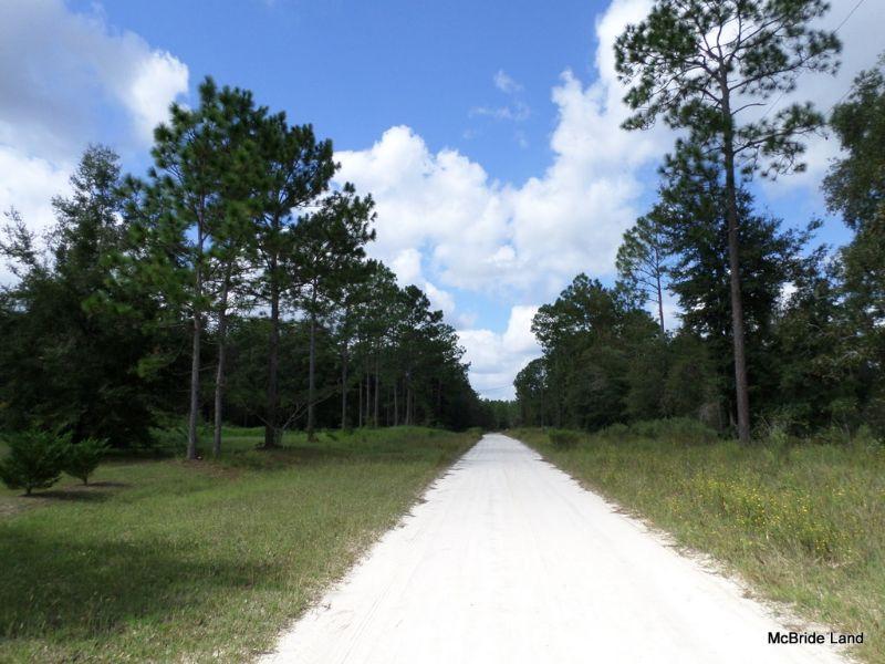 Lancala Farms - 5± Acres - $33,900 : Land for Sale : Ocala
