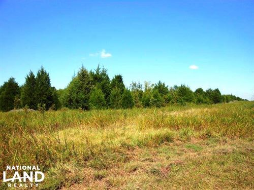 Recreational Investment : Montgomery : Lowndes County : Alabama