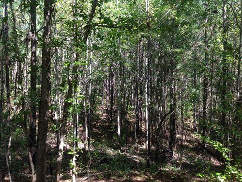 22-124 Old No, 7 : Rockford : Coosa County : Alabama