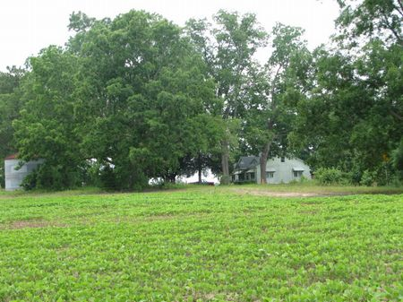 42.94 Acres In Brooklet, Georgia : Brooklet : Bulloch County : Georgia