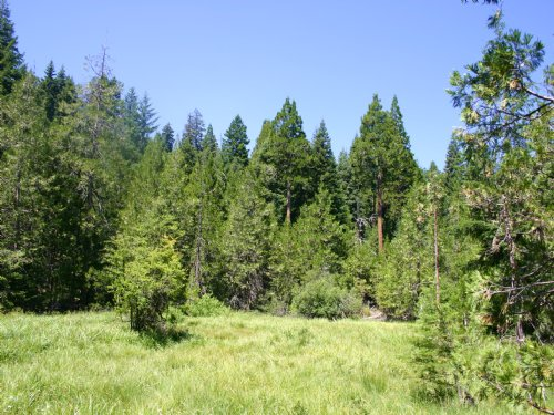 Grizzly Peak Tract : Ashland : Jackson County : Oregon