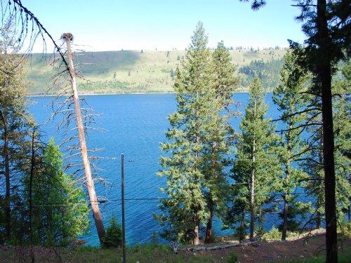 Lake Shore Land : Wallowa Lake : Wallowa County : Oregon