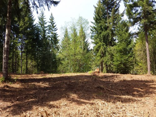 Strassel Homesite : Forest Grove : Washington County : Oregon