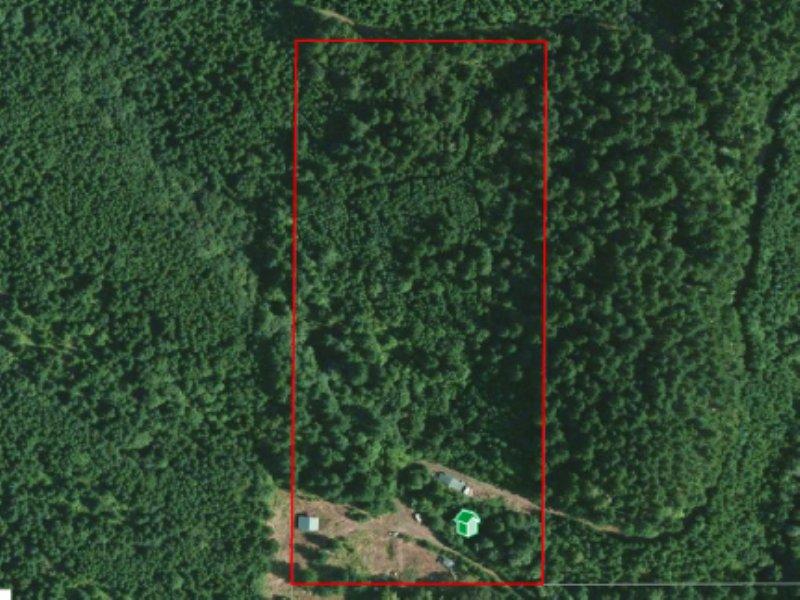 Turner Creek Property : Yamhill : Yamhill County : Oregon
