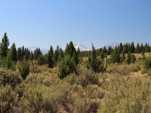 Geneva View Ranch 1109+/-Acres : Madras : Jefferson County : Oregon