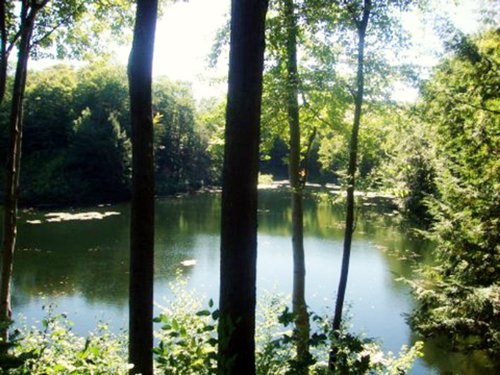 Waterfront Cabin On Autumn Lake : Orwell : Oswego County : New York