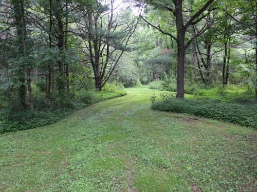 56+/- Acres, Land In Muncy : Muncy : Montour County : Pennsylvania