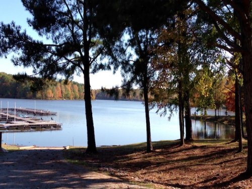 Lot 195 1.5 Acre Water View Lot : Cedar Grove : Carroll County : Tennessee