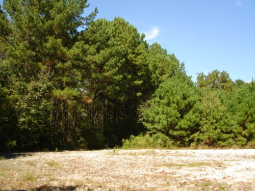 8 Acres With Well : Doerun : Colquitt County : Georgia