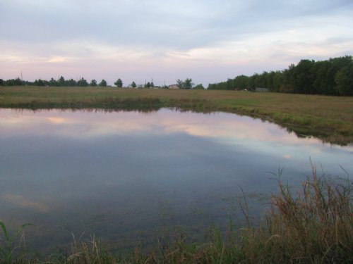 Recreational Acreage For Sale : Detroit : Lamar County : Texas
