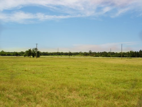 Open Acreage For Sale : Blossom : Lamar County : Texas