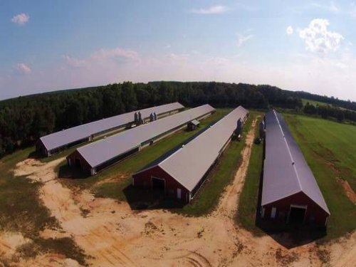 4 House Broiler Farm In Elba : Elba : Coffee County : Alabama