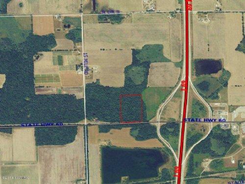 Wooded, Buildable 20 Acres : Tekonsha : Calhoun County : Michigan