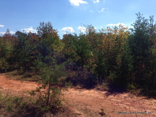 13 Acres Near Blacksburg : Blacksburg : Cherokee County : South Carolina