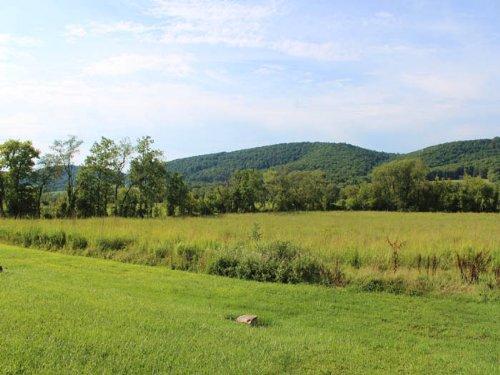 6 Acre Lot : Danville : Columbia County : Pennsylvania