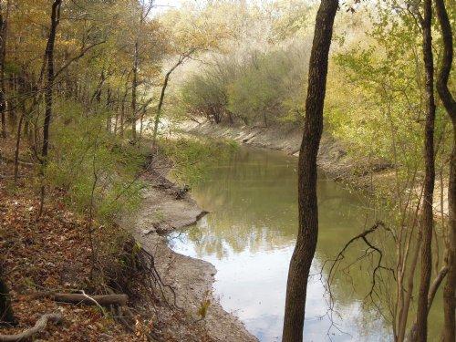 40+/- Acres Of Timber, Hunting Land : Tichnor : Arkansas County : Arkansas