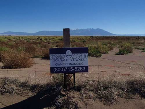 40 Acres, Low Down, Owner Financing : Alamosa : Colorado