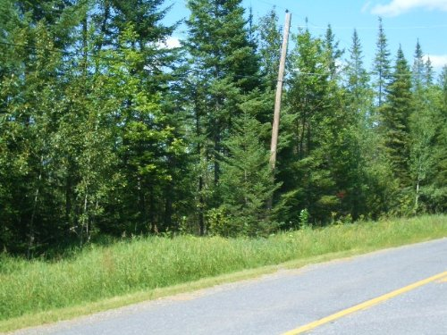 61.77 Acres For Sale : Presque Isle : Aroostook County : Maine