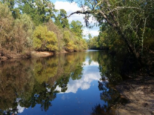 Riverfront Land For Sale : Nahunta : Brantley County : Georgia
