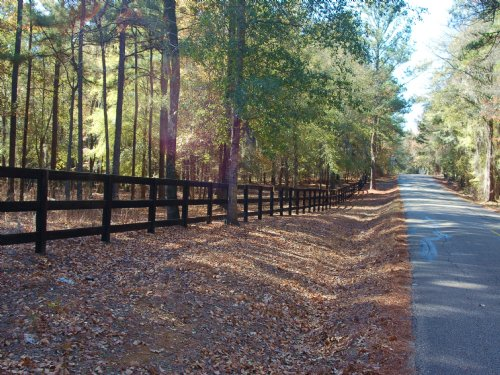 Stunning Gorgeous Wooded 35 Acres : Pike Road : Montgomery County : Alabama