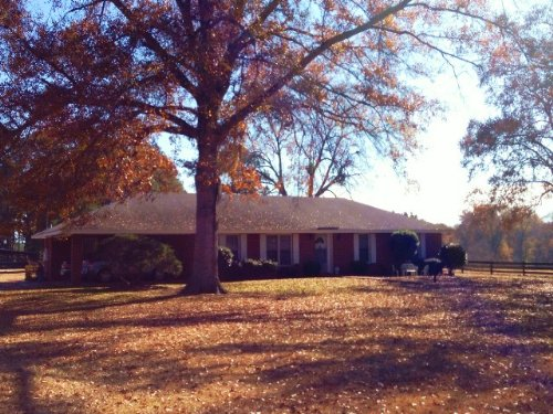 3 Br/2 Ba Home On 59 +/- Ac : Mathews : Montgomery County : Alabama