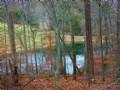 Scenic Land, 3 Acre Pond, And Shop : Natural Bridge : Rockbridge County : Virginia