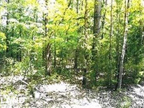 Two Residential Lots : West Point : Clay County : Mississippi