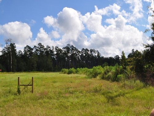 61.8 Acres Highway 146 : Rye : Liberty County : Texas