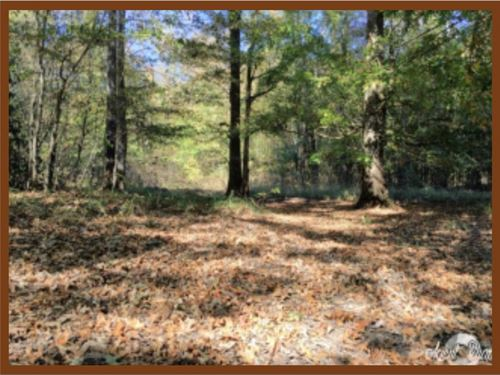 611 Acres In Newton County, Ms : Little Rock : Newton County : Mississippi