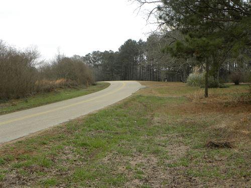 24-009W Hall Hunting Timber Tract : Luverne : Crenshaw County : Alabama