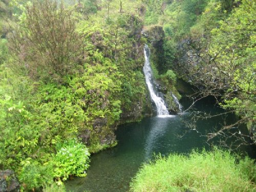 1/4 Acre Nanawale Estates : Pahoa : Hawaii County : Hawaii