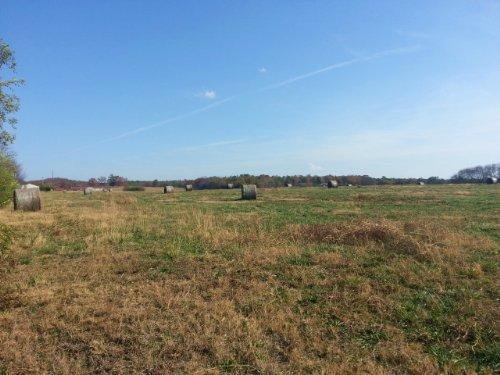27+/- Acres Pastureland : Lincoln : Talladega County : Alabama