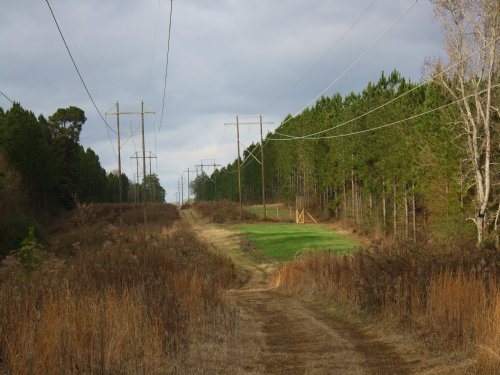 200 Ac Timber And Investment : Brookhaven : Lincoln County : Mississippi